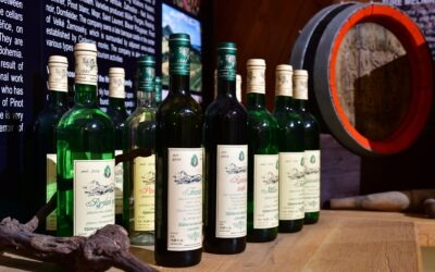 Do Litoměřic za Zahradou Čech, pivem a vínem